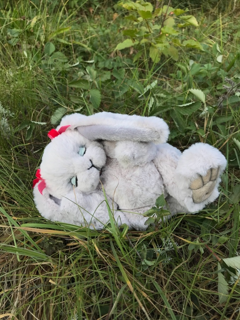 шьем Тедди-зайца